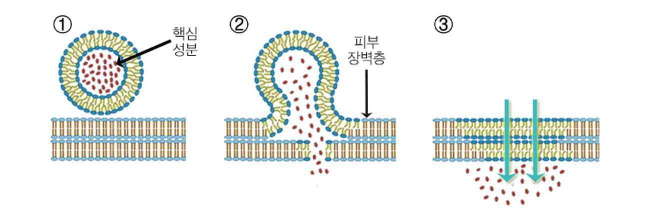 개체, 시계이(가) 표시된 사진 자동 생성된 설명